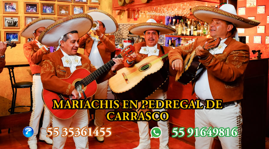 Mariachis en Pedregal de Carrasco